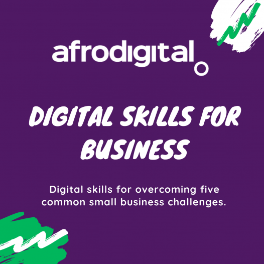 Business Digital Skills Afrodigital Pan University