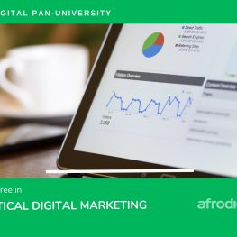 Pan-Degree-Digital-Marketing Image